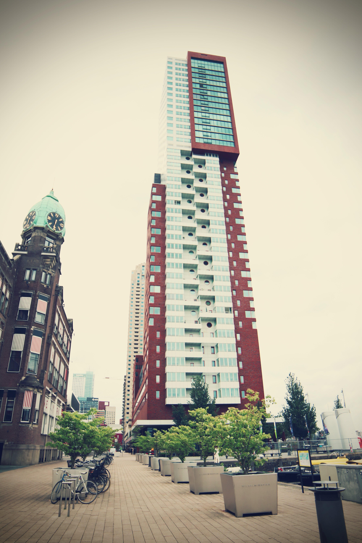 architecture, buildings, cars