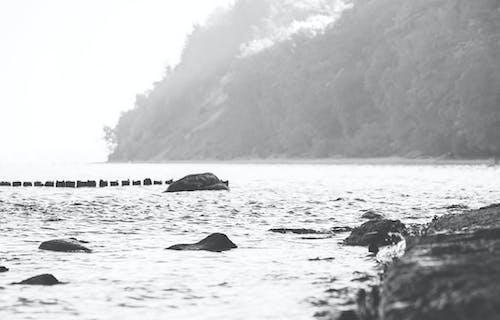 Darmowe zdjęcie z galerii z bałtycki, morze, morze bałtyckie, plaża