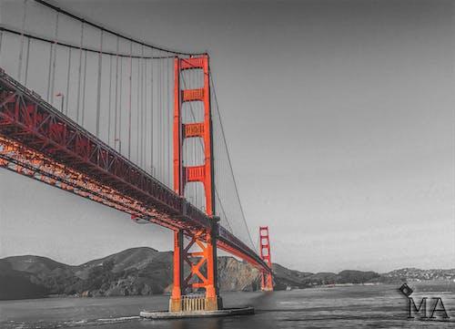Kostnadsfri bild av b & w, buktområdet, Golden Gate-bron