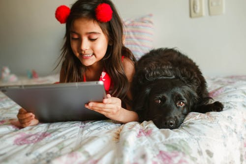 Crop cheerful girl watching videos on tablet while lying on cozy bed with calm black Spaniel dog