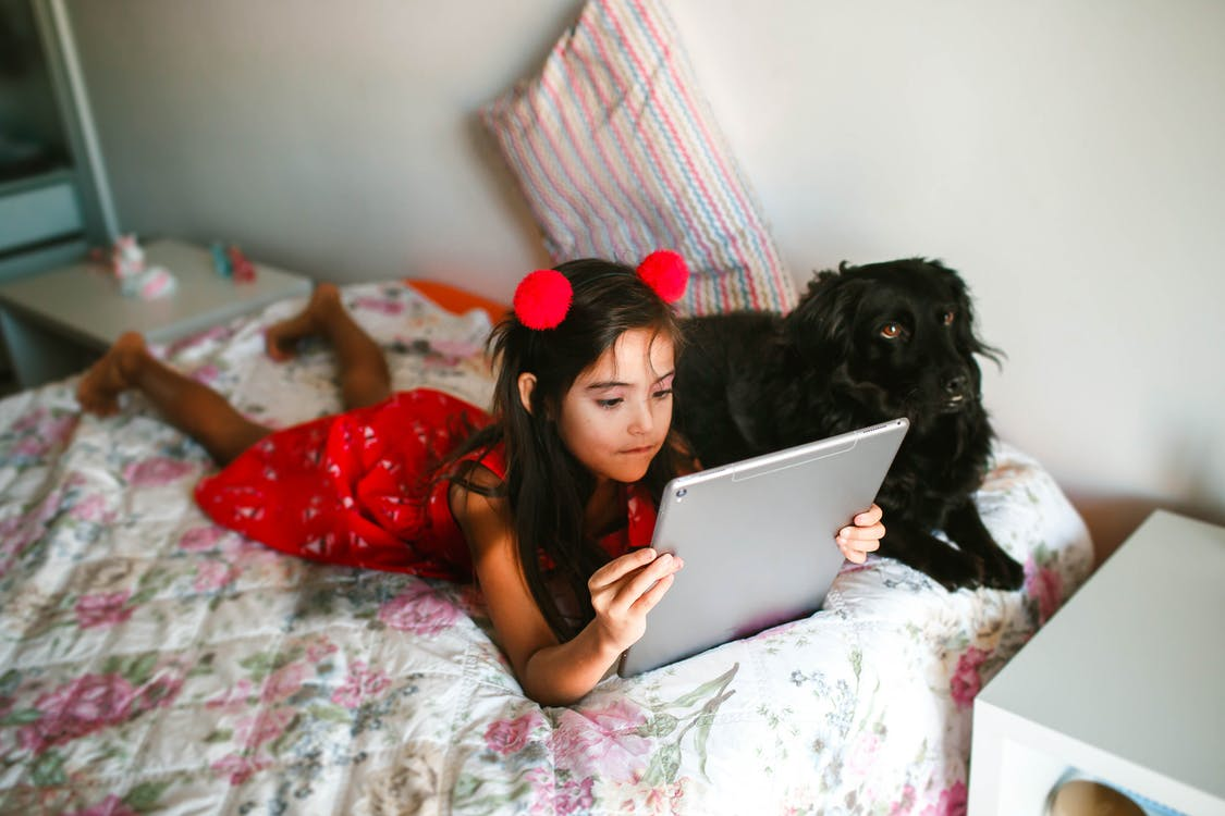 Positive girl using tablet and resting on bed with Spaniel