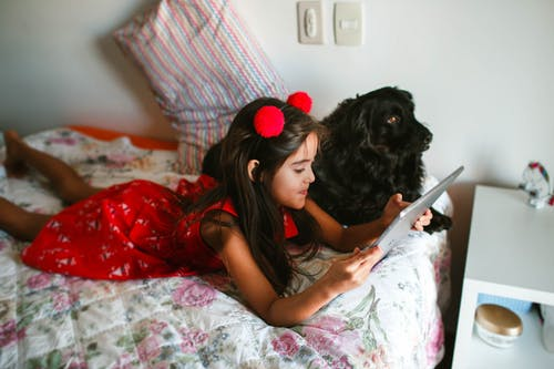 From above positive girl in trendy red dress and hairband relaxing on comfy bed with contemporary tablet near fluffy black Spaniel dog