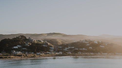 Free stock photo of beach, Castlepoint, new zealand
