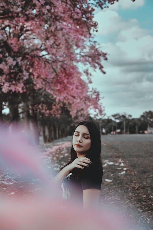 Woman in Black Dress Standing Under Pink Leaf Trees