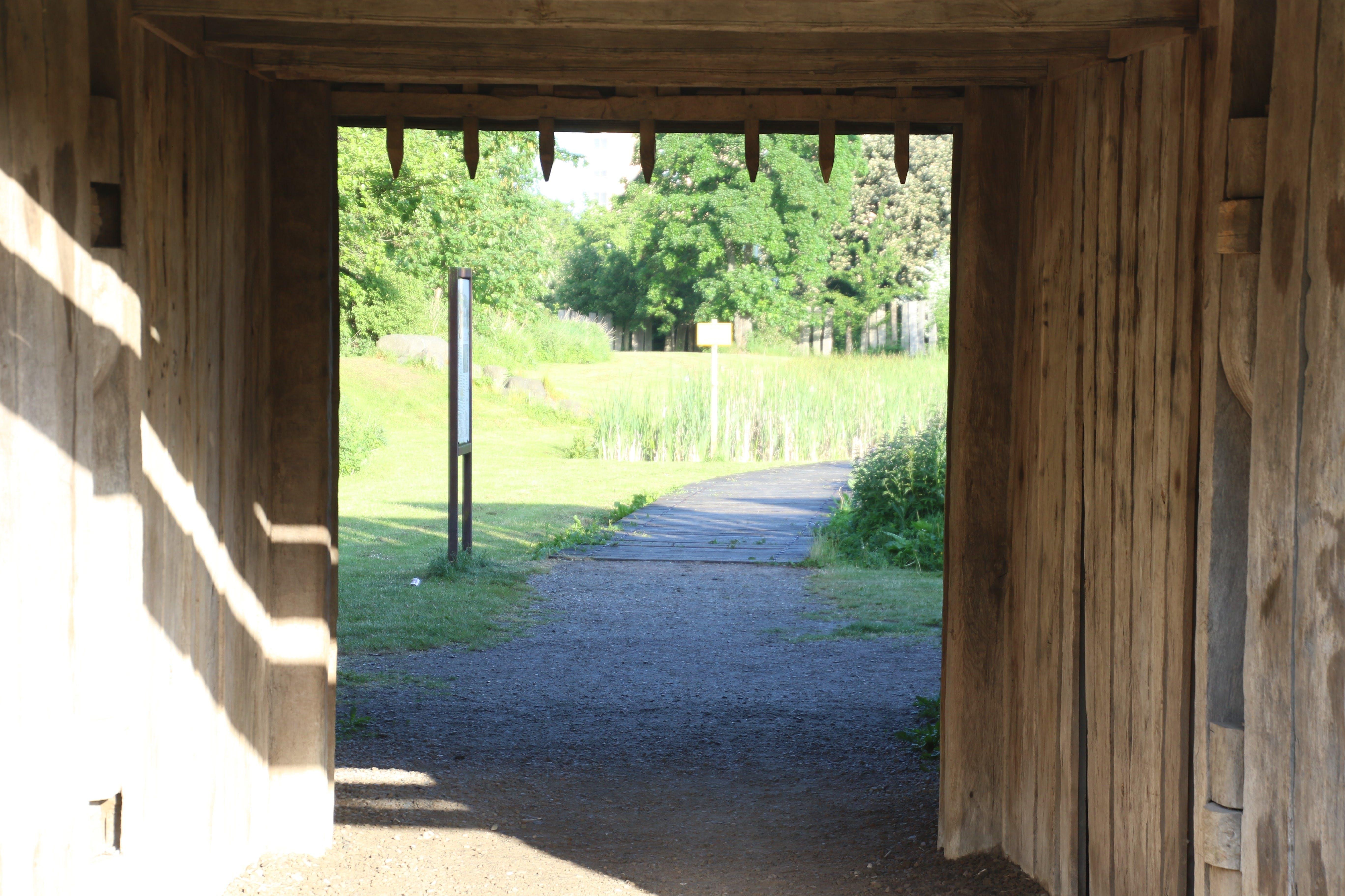 Free stock photo of wood, path, gate, walkway