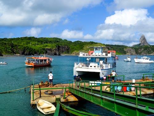 Foto d'estoc gratuïta de aigua, badia, barca, barques