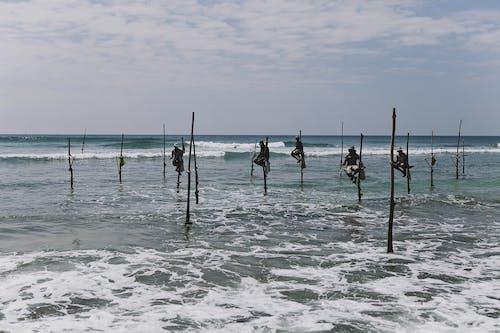 Fotos de stock gratuitas de acción, agua, arena, Asia