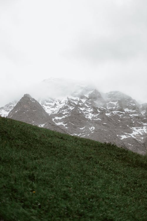 Free stock photo of cold, fog, glacier, grass
