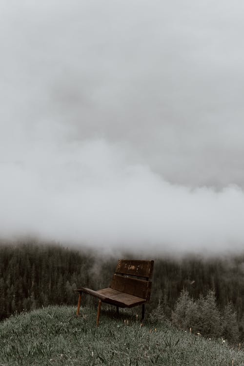 Picturesque scenery of solitary wooden bench placed on green hill in forest on foggy day