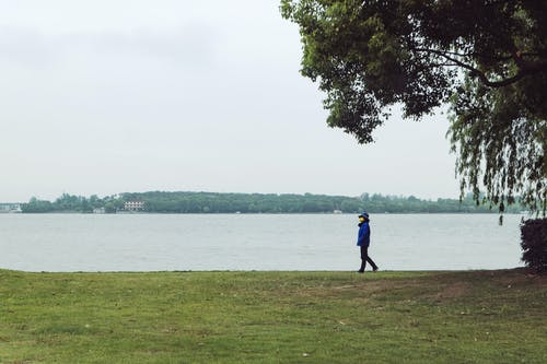 Anonymous person walking alone in park near lake