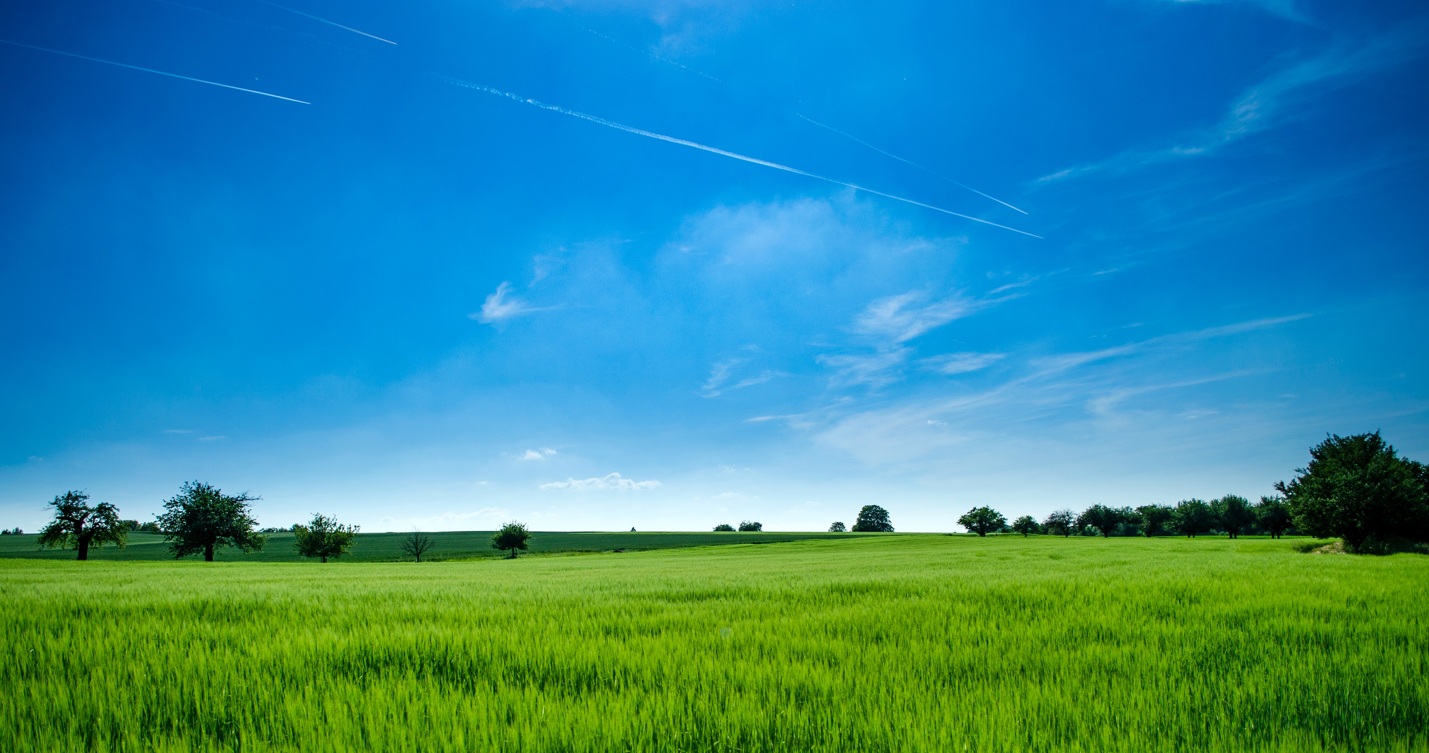 Panoramic Photography Of Green Field Free Stock Photo
