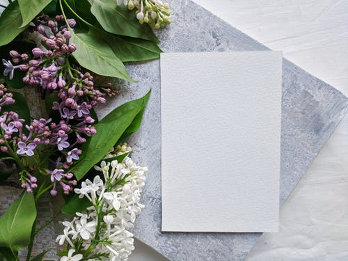 White Paper on Green Plant
