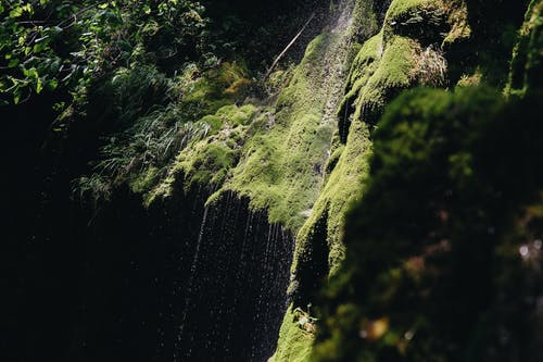 Amazing waterfall in green tropical rainforest
