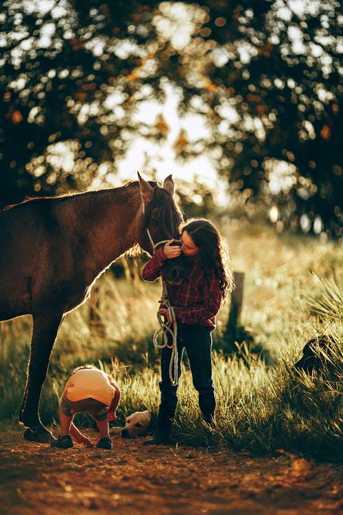 Full length of teen girl embracing horse standing on grassy ground with little kid and dog