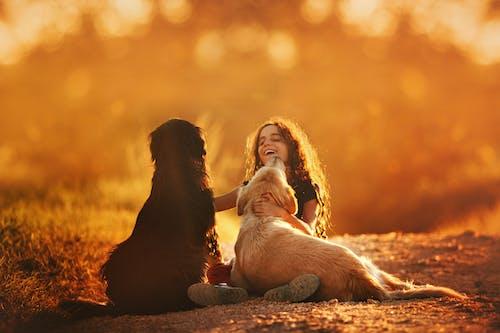 Yerde Köpeklerle Oynarken Mutlu Kız