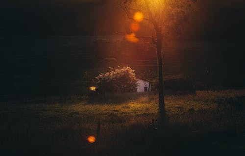Sunset over grassy field and rural cottage