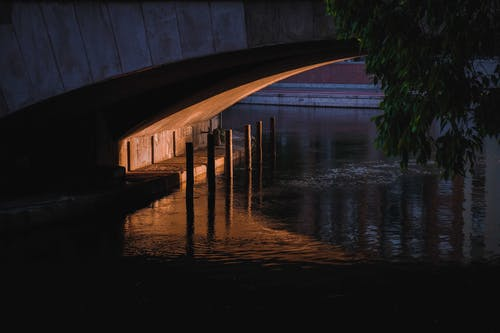 Brown Wooden Dock over Calm Water