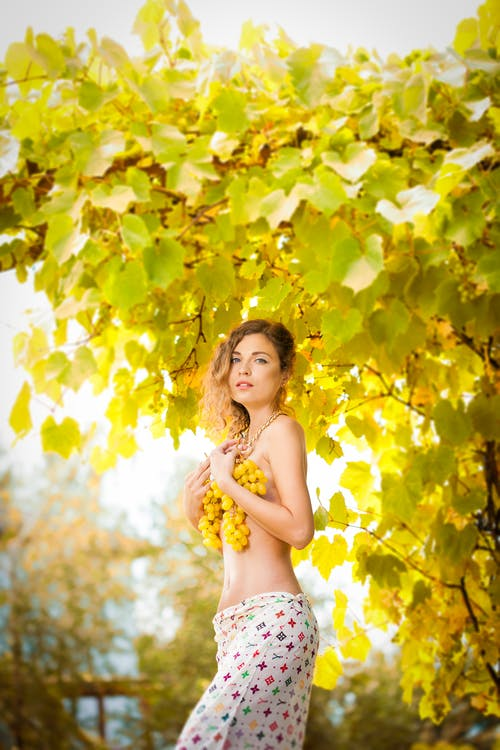 Side view of sensual topless female standing in green garden and covering breast with bunches of grapes