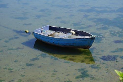 Free stock photo of barque, bleu, bois
