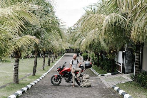 Male biker sitting on motorcycle on pathway among palms