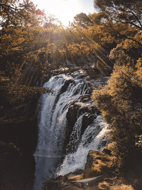 Waterfalls Surrounded With Trees With Sunrays