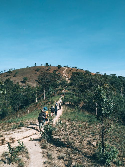 People Walking on Dirt Road Near Green Trees