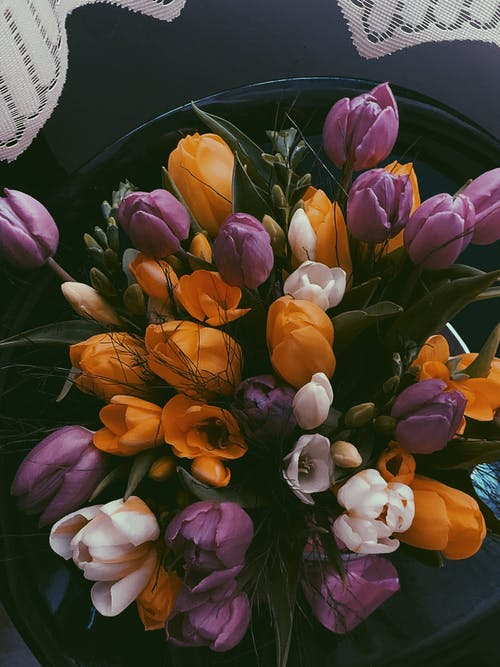 Fresh aromatic multicolored tulips in bunch