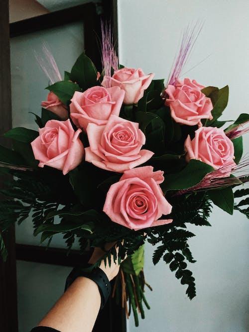 Kostnadsfri bild av blad, blomma, blomning, blomsterarrangemang