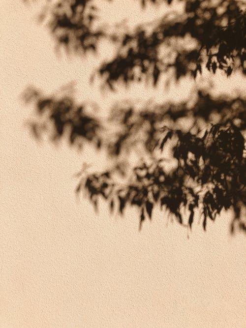 Gratis lagerfoto af 4k-baggrund, abstrakt, årgang