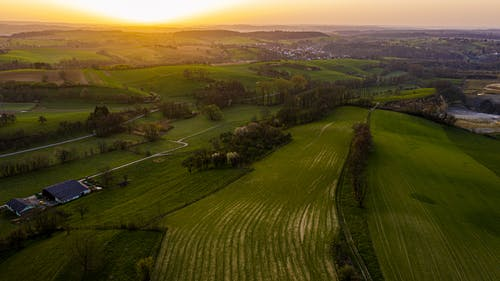 Green agricultural fields at bright sunset