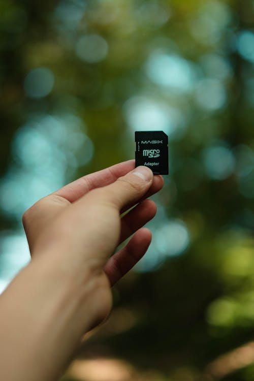 Crop person holding modern memory card against lush green trees in sunny park