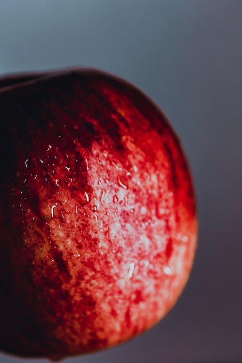 Free stock photo of fruta, maçã, wallpaper colorido, wallpaper HD