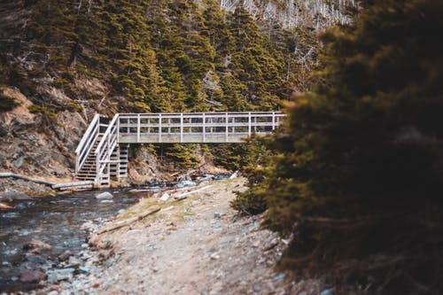 Wooden bridge above narrow river in coniferous forest