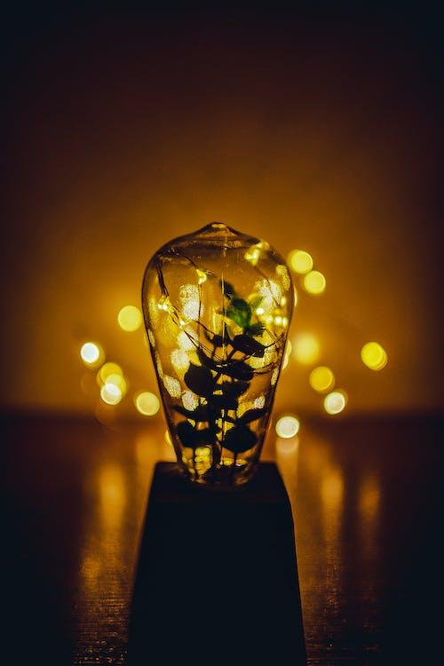Free stock photo of luz, luzes, wallpaper HD