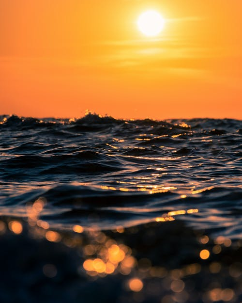 Immagine gratuita di acqua, ambiente, arancia, arancione