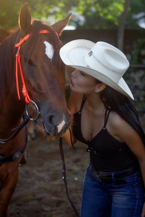 Stylish ethnic lady kissing horse in countryside