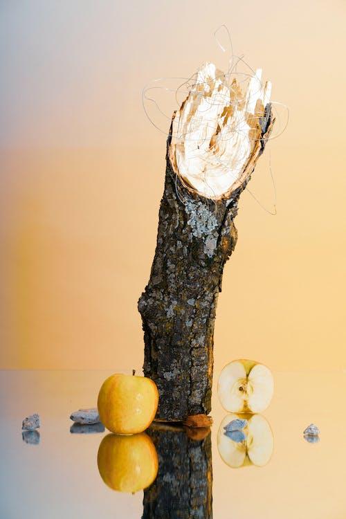 Free stock photo of apple, mirror, rock, stilllife