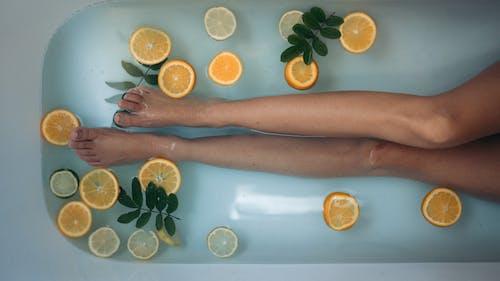 宠, 感官, 放鬆, 柑橘 的 免费素材图片