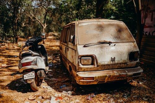 White Van Parked on Brown Dried Leaves