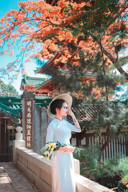 Δωρεάν στοκ φωτογραφιών με lifestyle, sakura, ανθίζω