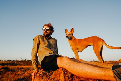 Photo of Man Sitting on Rock With His Dog