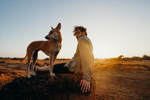 Photo of Man Sitting on Rock With His Brown Dog
