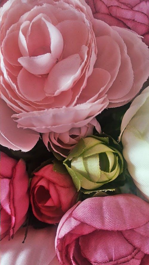 Ilmainen kuvapankkikuva tunnisteilla colores, kukat, ramo de flores, rosas