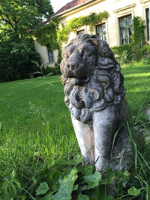 Free stock photo of lion, statue, stone, villa