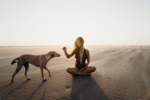 Photo of Woman Sitting on Sand Near Brown Dog