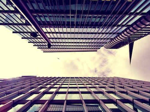 高層建築的低角度照片