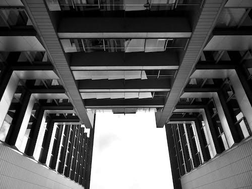 ガラス窓, シティ, モノクローム, ローアングルショットの無料の写真素材