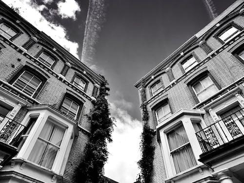 Foto d'estoc gratuïta de apartaments, arquitectura, art, balcó