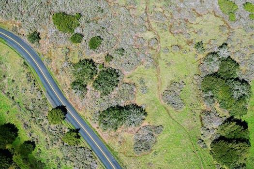 photo of road, landscape, nature, texture