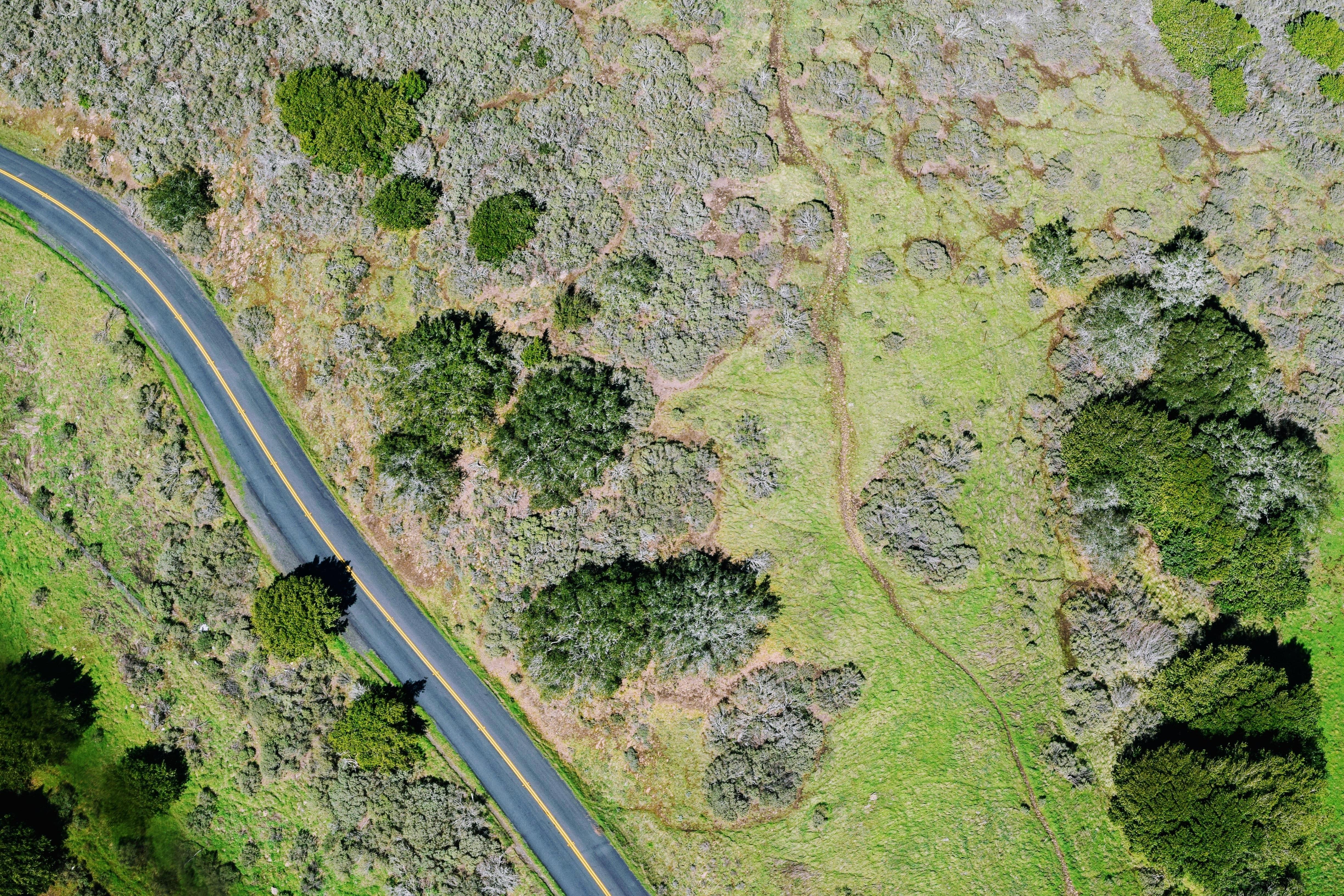 Free Stock Photo Of Aerial Aerial Shot Bird S Eye View